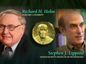 石油大亨设立化学领域的诺贝尔奖?企业家这样表现对科学的热爱