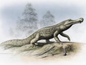 祖巨蜥鳄:完全陆生的史前巨鳄