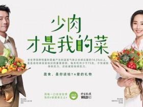 张钧甯号召中国人少吃肉,到底有没有道理?