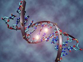 DNA也能用来造计算机?秘诀就在建造合成细胞