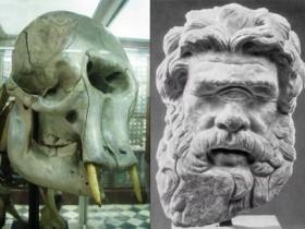 希腊神话中的独眼巨人其实是远古侏儒象?