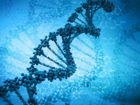 """都有哪些""""异己基因""""进入我们身体?"""