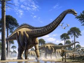 恐龙脖子那么长,到底哪种恐龙的脖子最长?