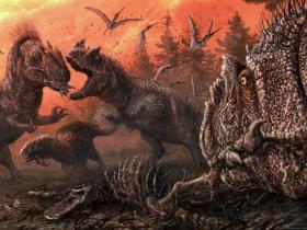 称霸侏罗纪的异特龙竟然同类相食!