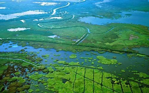 """一条""""自然""""的河流,是什么样子的?"""