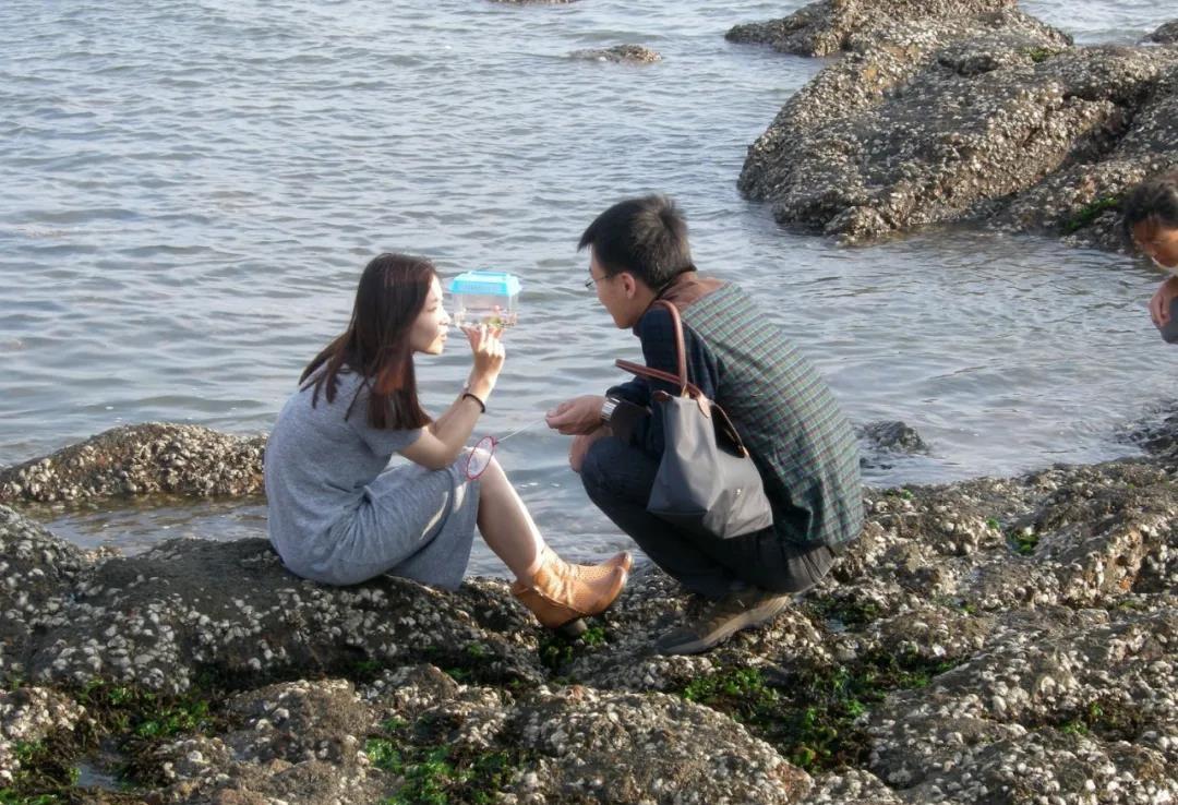 除了藻类,海滩上还能捡到啥?